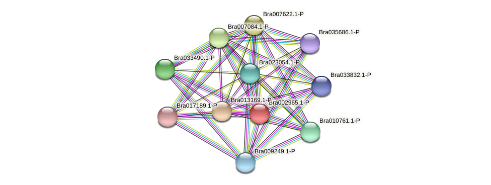 Bra002965 protein (Brassica rapa) - STRING interaction network