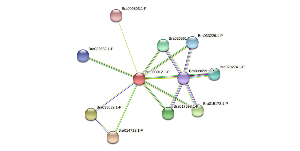 Bra003012 protein (Brassica rapa) - STRING interaction network