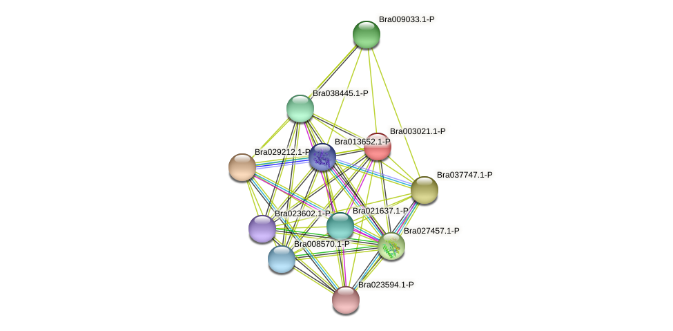 Bra003021 protein (Brassica rapa) - STRING interaction network