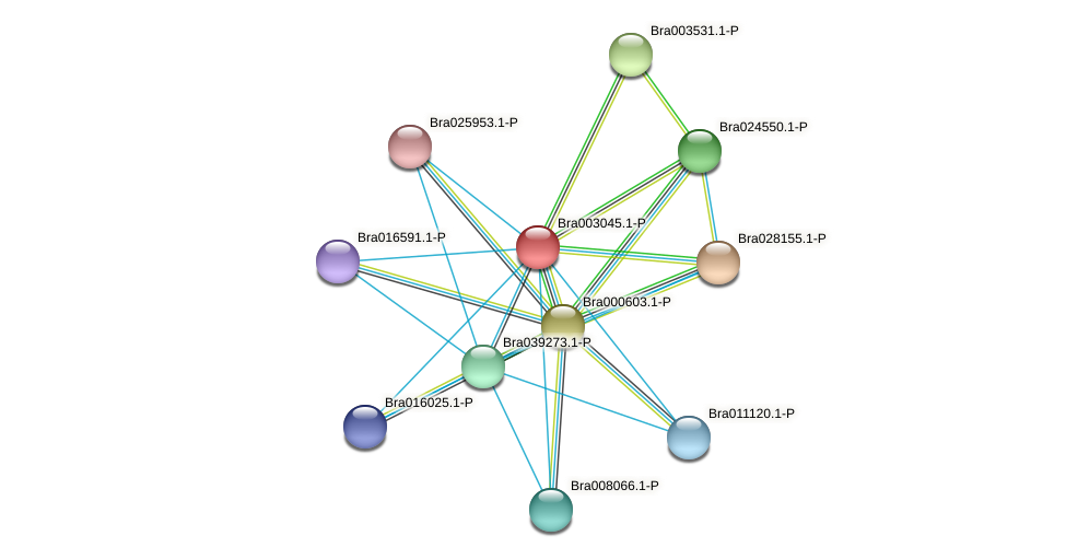 Bra003045 protein (Brassica rapa) - STRING interaction network