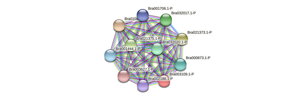 Bra003109 protein (Brassica rapa) - STRING interaction network