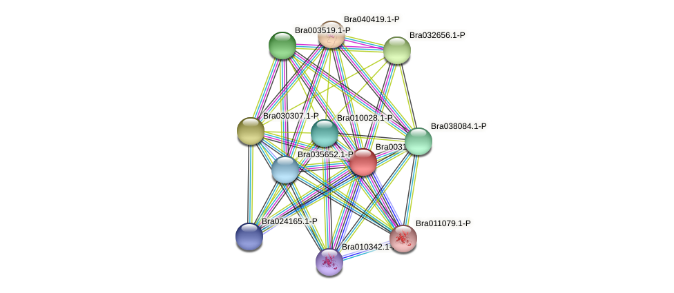 Bra003123 protein (Brassica rapa) - STRING interaction network