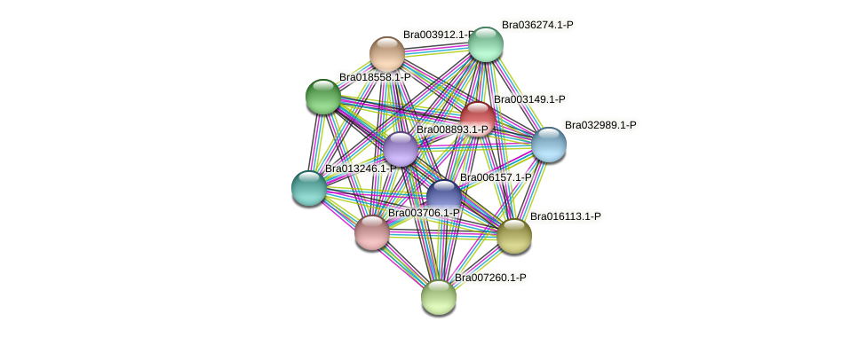 Bra003149 protein (Brassica rapa) - STRING interaction network