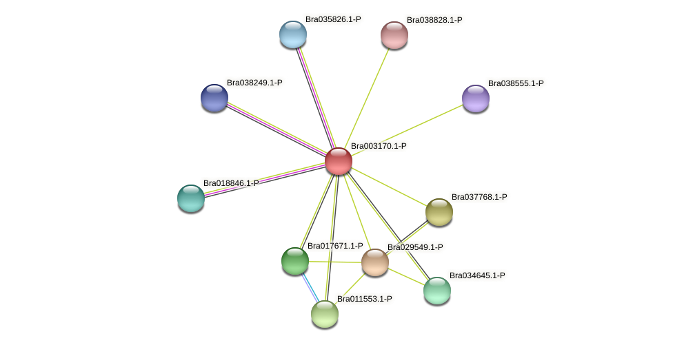 Bra003170 protein (Brassica rapa) - STRING interaction network