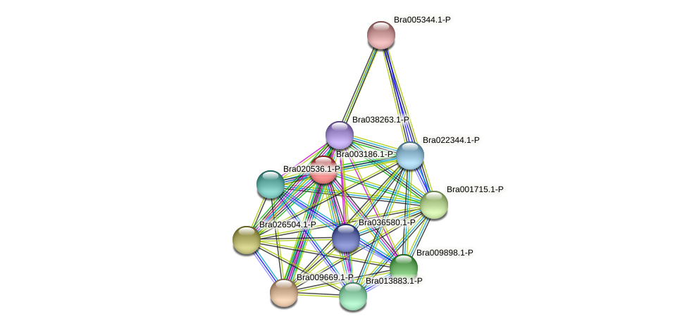Bra003186 protein (Brassica rapa) - STRING interaction network