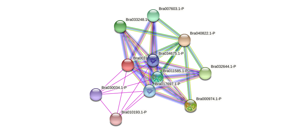 Bra003196 protein (Brassica rapa) - STRING interaction network
