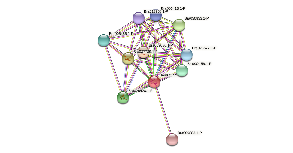 Bra003199 protein (Brassica rapa) - STRING interaction network