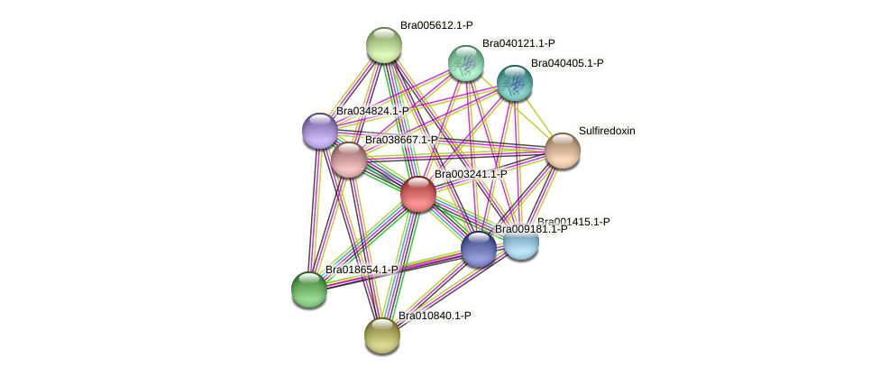 Bra003241 protein (Brassica rapa) - STRING interaction network