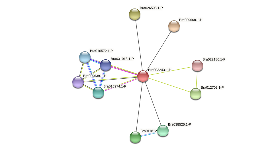 Bra003243 protein (Brassica rapa) - STRING interaction network