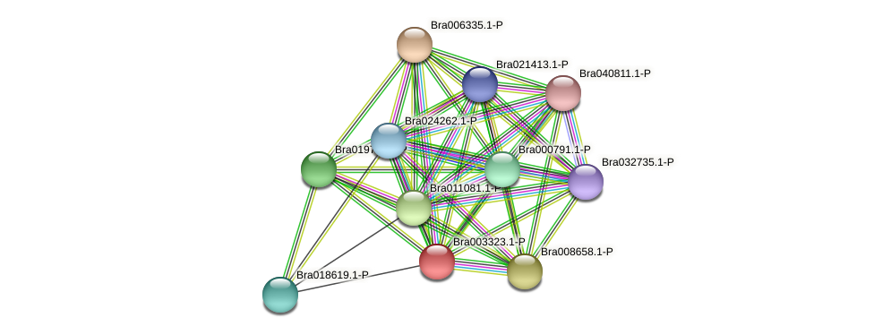 Bra003323 protein (Brassica rapa) - STRING interaction network