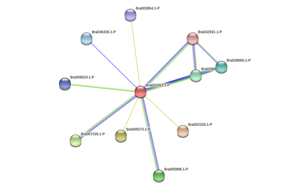 Bra003353 protein (Brassica rapa) - STRING interaction network