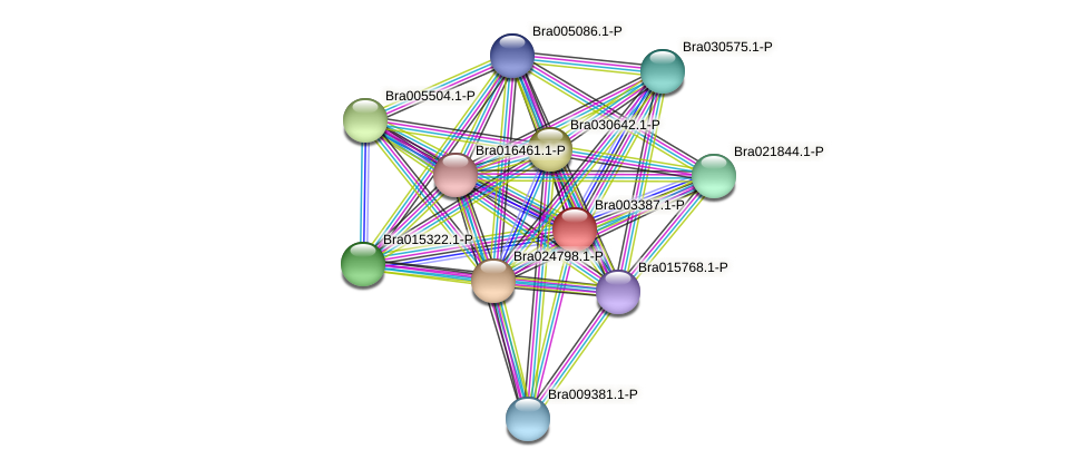 Bra003387 protein (Brassica rapa) - STRING interaction network