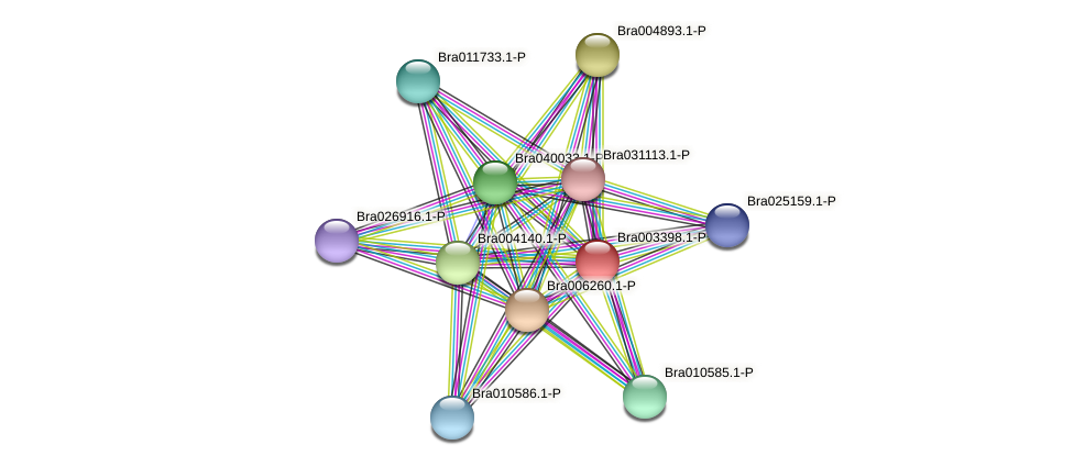 Bra003398 protein (Brassica rapa) - STRING interaction network