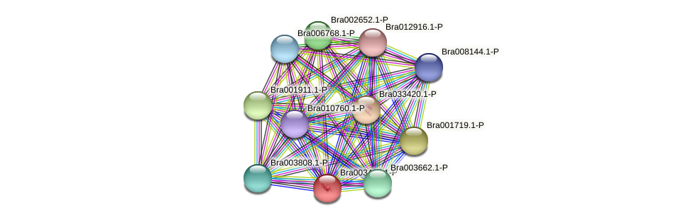 Bra003406 protein (Brassica rapa) - STRING interaction network