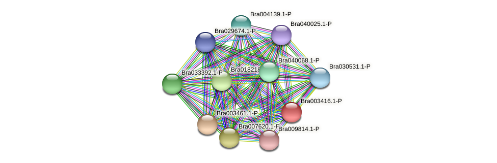 Bra003416 protein (Brassica rapa) - STRING interaction network