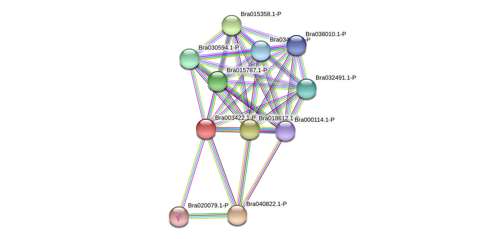 Bra003422 protein (Brassica rapa) - STRING interaction network