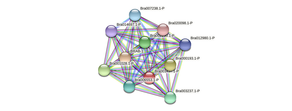 Bra003437.1-P protein (Brassica rapa) - STRING interaction network