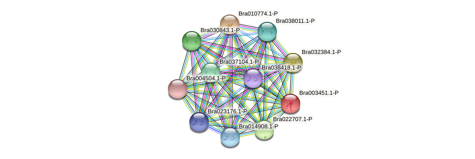 Bra003451 protein (Brassica rapa) - STRING interaction network