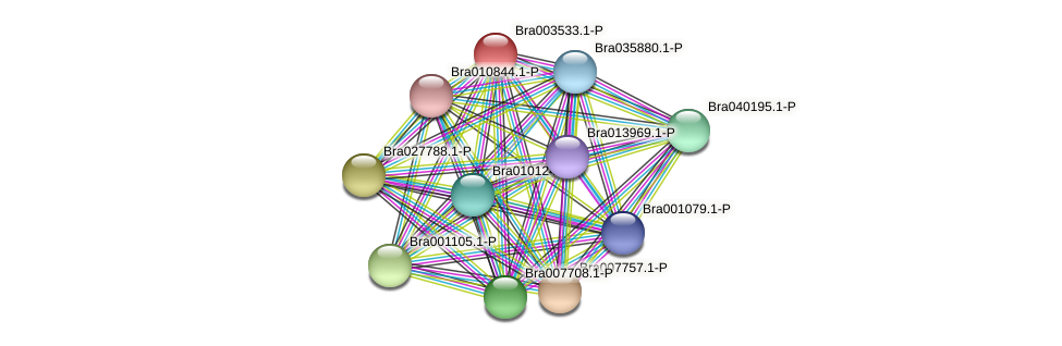 Bra003533 protein (Brassica rapa) - STRING interaction network