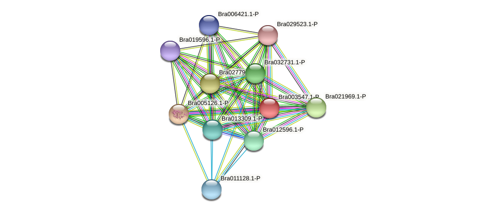 Bra003547 protein (Brassica rapa) - STRING interaction network