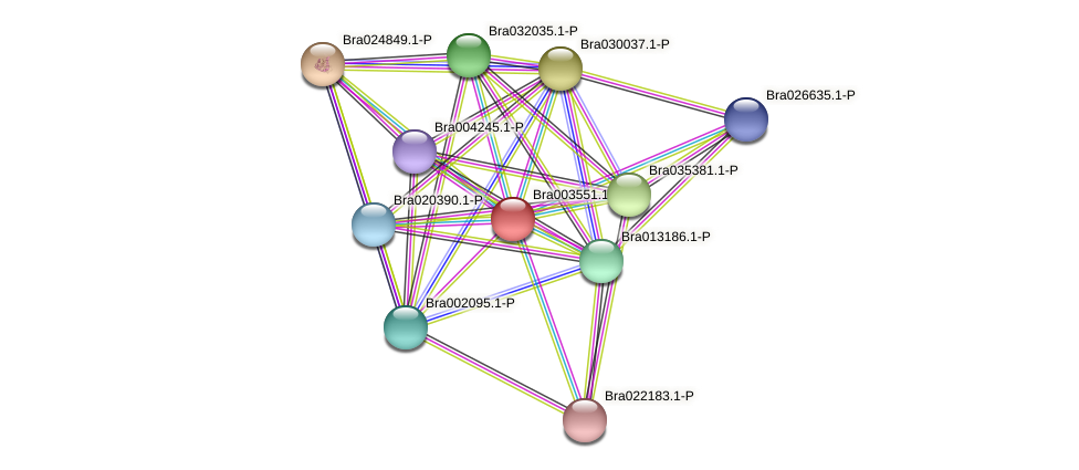 Bra003551 protein (Brassica rapa) - STRING interaction network