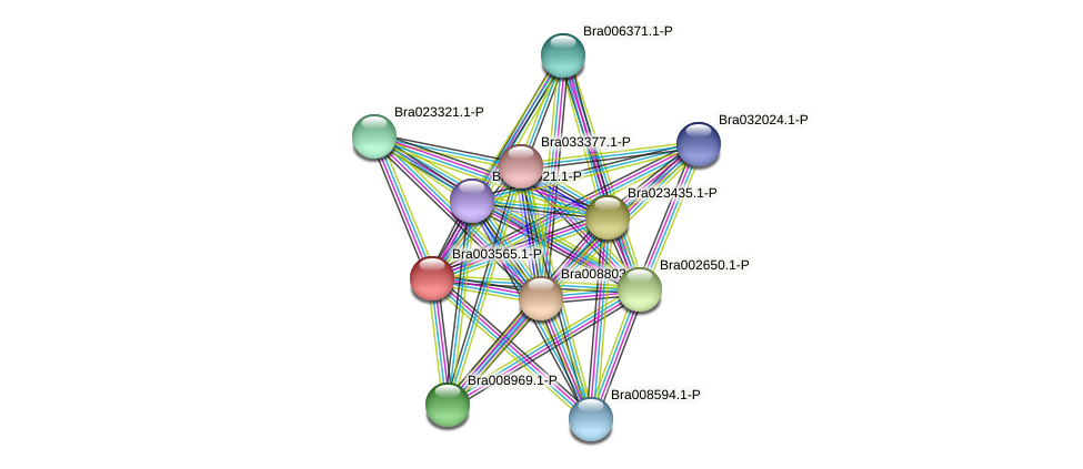 Bra003565 protein (Brassica rapa) - STRING interaction network