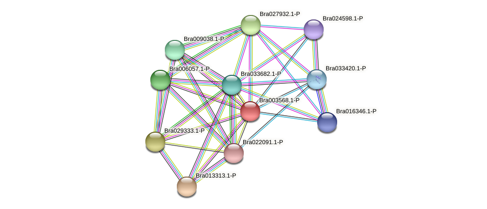 Bra003568 protein (Brassica rapa) - STRING interaction network