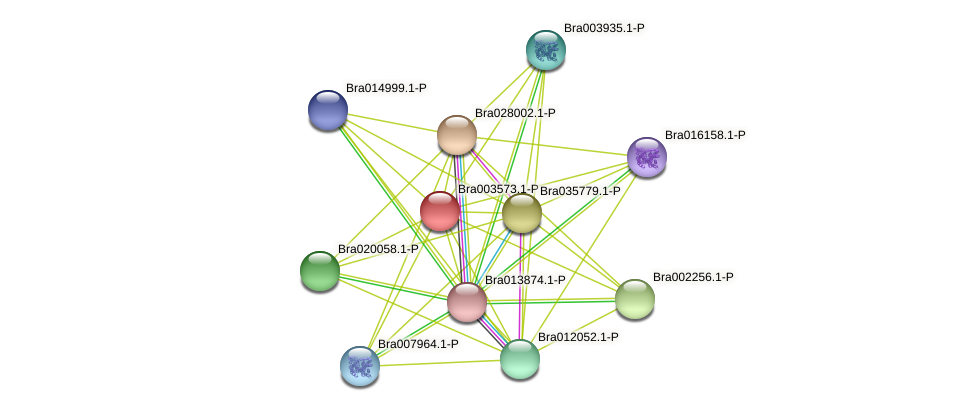 Bra003573 protein (Brassica rapa) - STRING interaction network