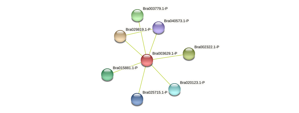 Bra003629 protein (Brassica rapa) - STRING interaction network