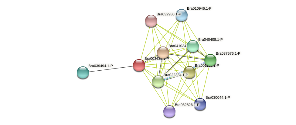 Bra003632 protein (Brassica rapa) - STRING interaction network