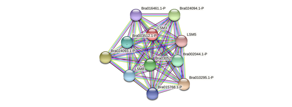 Bra003705 protein (Brassica rapa) - STRING interaction network