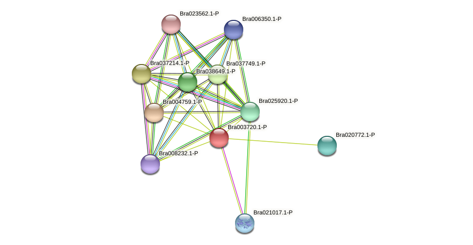 Bra003720 protein (Brassica rapa) - STRING interaction network