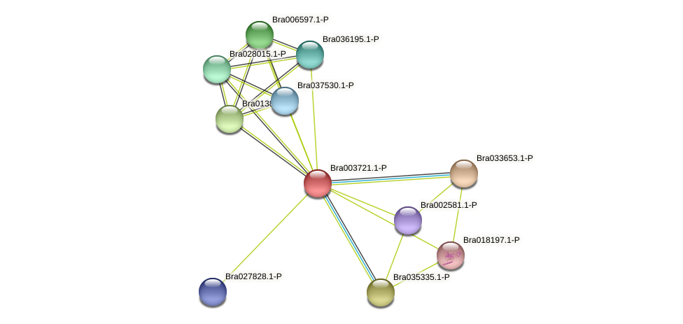 Bra003721 protein (Brassica rapa) - STRING interaction network