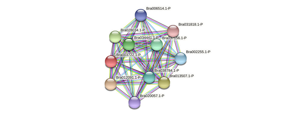 Bra003722 protein (Brassica rapa) - STRING interaction network