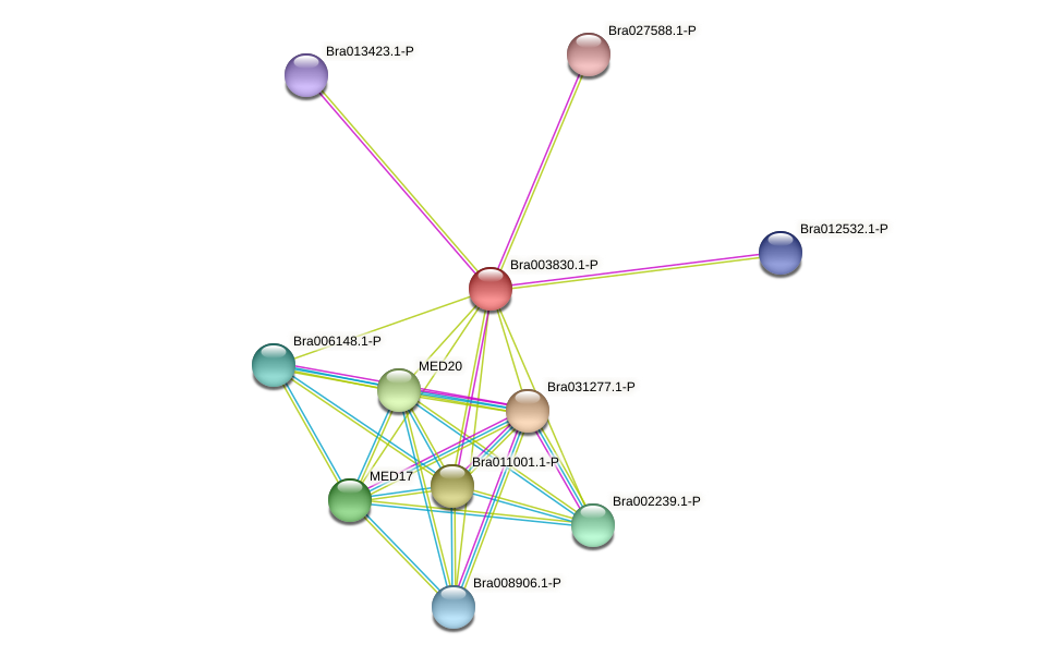 Bra003830 protein (Brassica rapa) - STRING interaction network