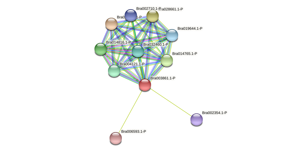 Bra003861 protein (Brassica rapa) - STRING interaction network