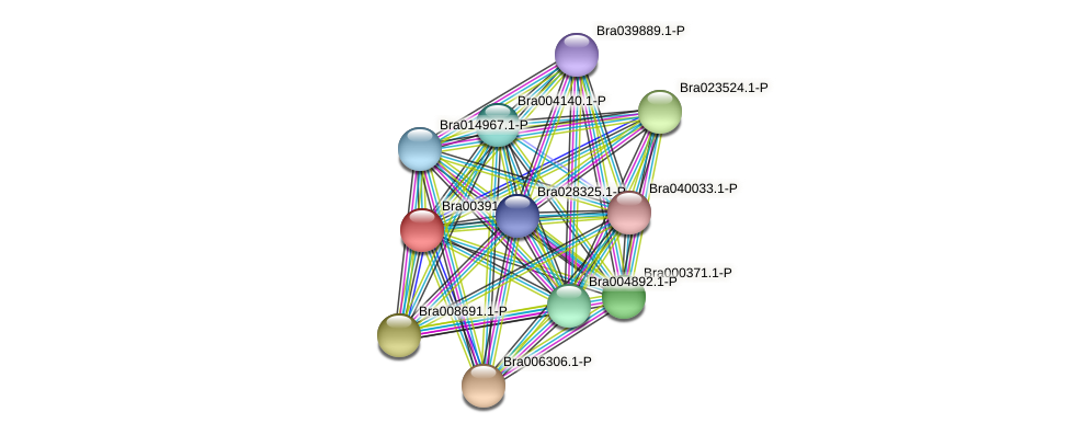 Bra003910 protein (Brassica rapa) - STRING interaction network