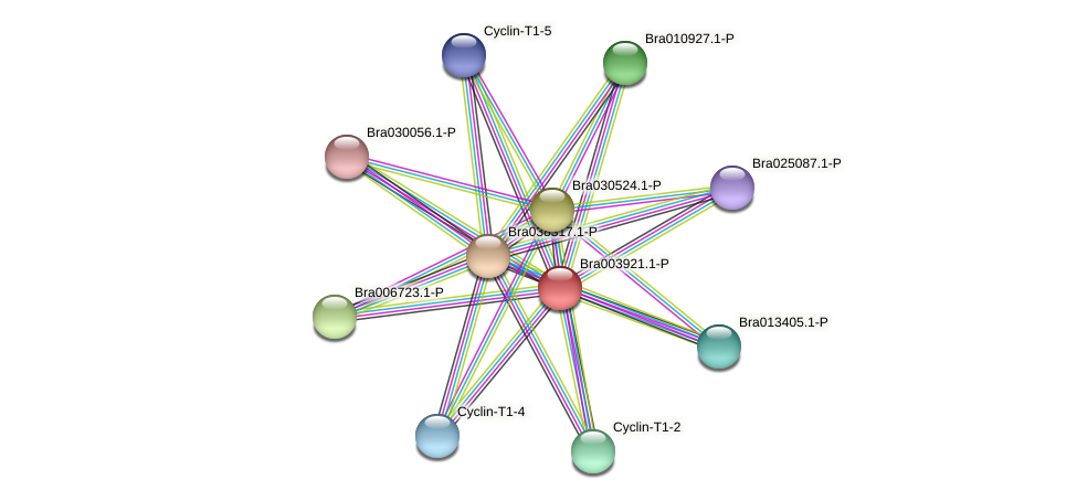 Bra003921 protein (Brassica rapa) - STRING interaction network