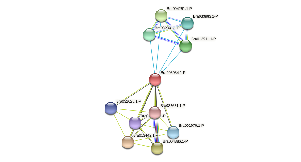 Bra003934 protein (Brassica rapa) - STRING interaction network