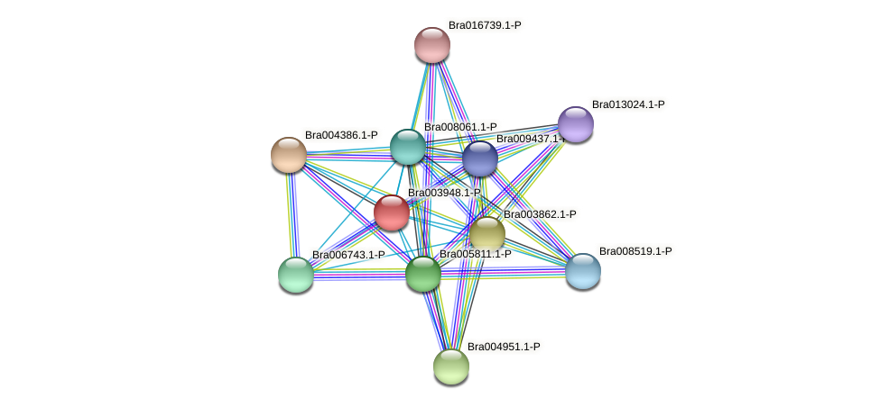 Bra003948 protein (Brassica rapa) - STRING interaction network