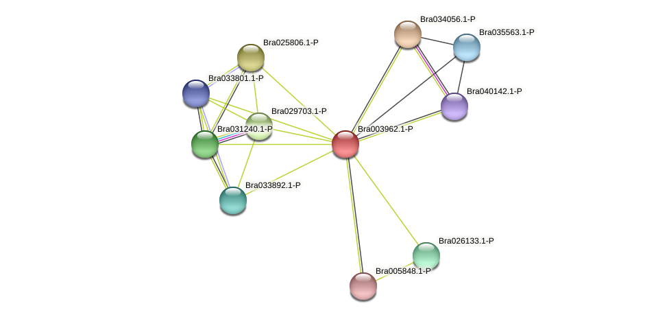 Bra003962 protein (Brassica rapa) - STRING interaction network
