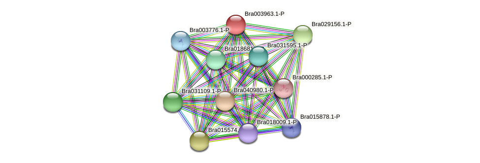 Bra003963 protein (Brassica rapa) - STRING interaction network