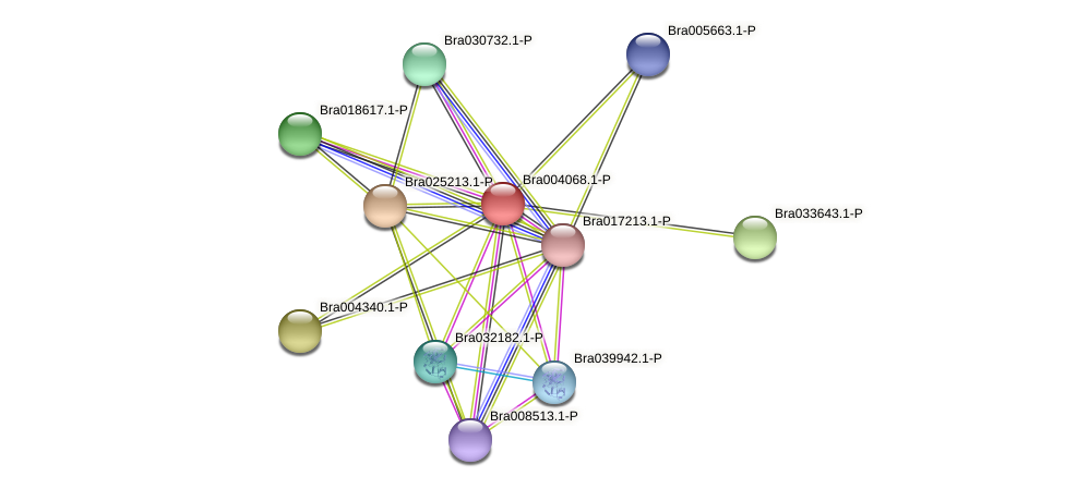 Bra004068 protein (Brassica rapa) - STRING interaction network