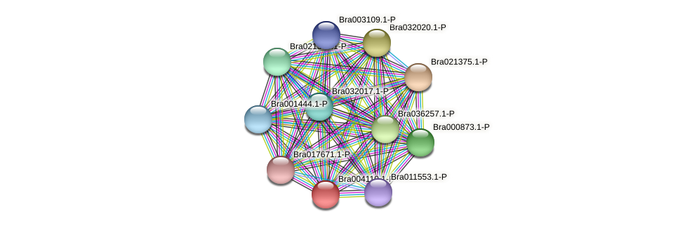 Bra004110 protein (Brassica rapa) - STRING interaction network