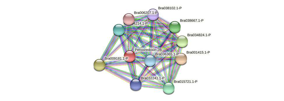 Bra004138 protein (Brassica rapa) - STRING interaction network