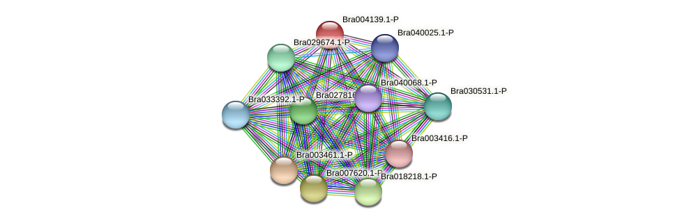 Bra004139 protein (Brassica rapa) - STRING interaction network