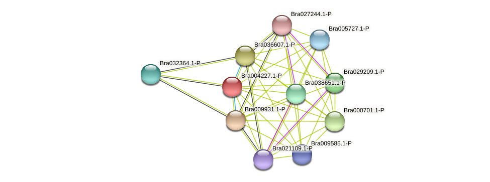 Bra004227 protein (Brassica rapa) - STRING interaction network