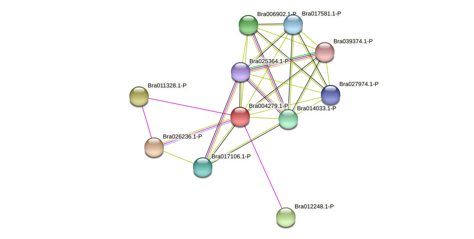 Bra004279 protein (Brassica rapa) - STRING interaction network