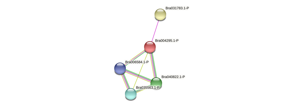 Bra004295 protein (Brassica rapa) - STRING interaction network