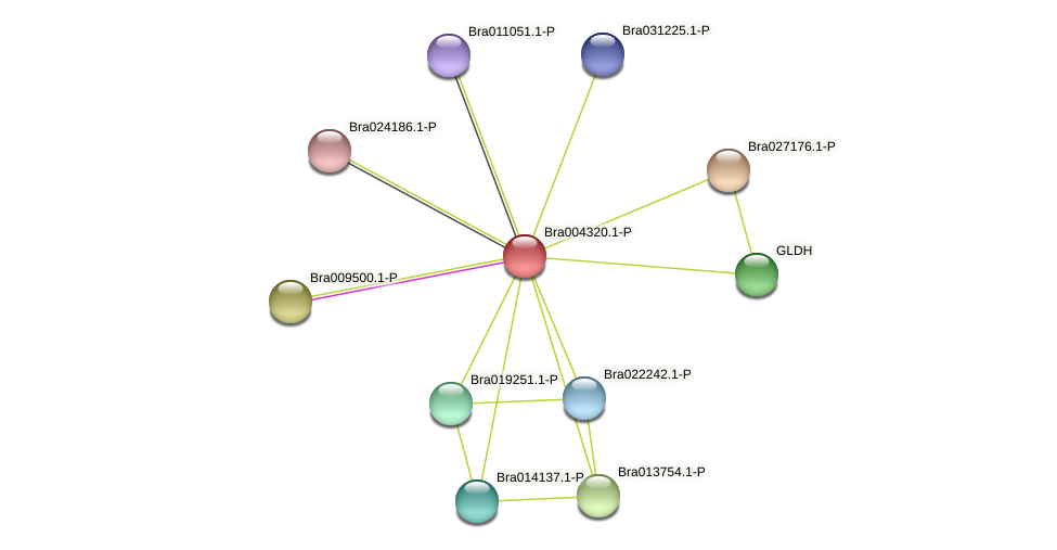 Bra004320 protein (Brassica rapa) - STRING interaction network